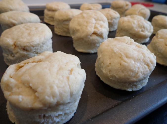 scones pre oven