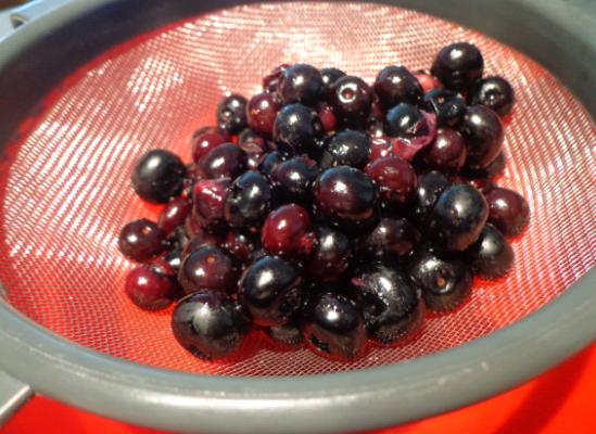 blueberry tart sieve