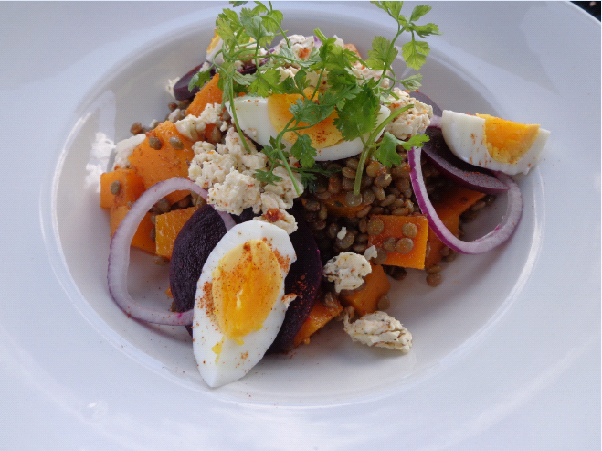 hillcrest berry farm butternut, lentil and beetroot salad