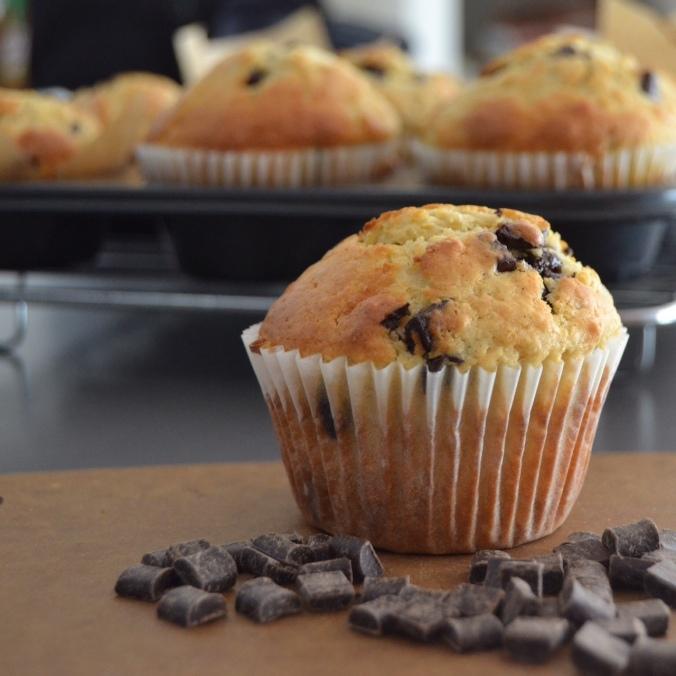 choc chip muffins 1