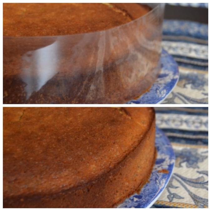 lemon poppyseed cake 4