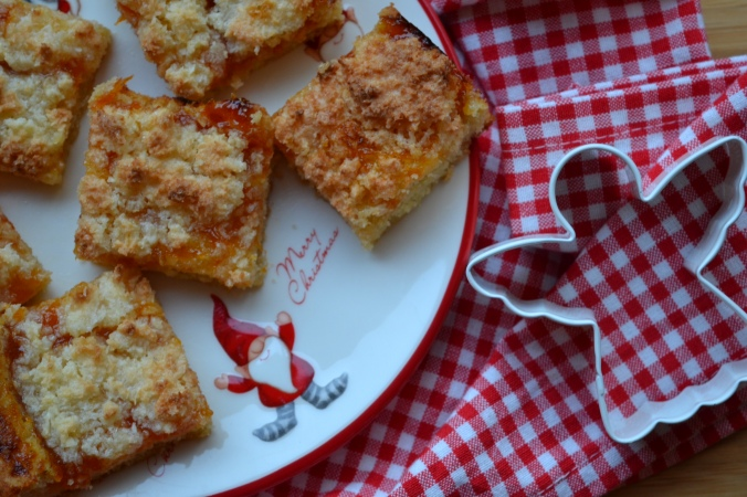 apricot-and-coconut-squares-3